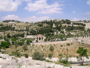 Mount-of-Olives-and-Garden-of-Gethsemane-tb051706549-bibleplaces